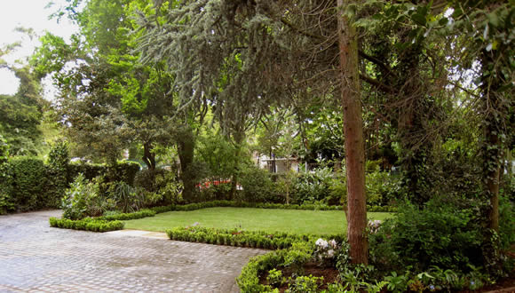 e2-large-driveway-low-box-hedging-garden-design