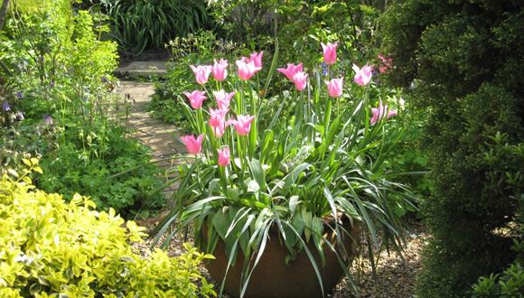 j3-english-cottage-style-garden-design
